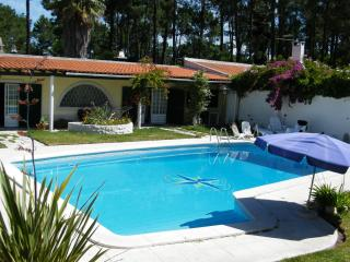 Living Verdizela ferias Low Cost - Madeira vacation rentals