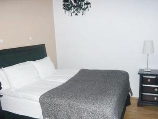 Luxury apartment suite in downtown Reykjavik - 1780 - Reykjavik vacation rentals