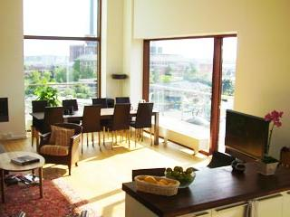 Luxury Penthouse Apartment With 3 Balconies - 305 - Image 1 - Copenhagen - rentals