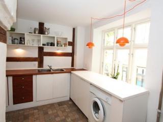 Luxury Apartment Downtown Copenhagen - 3086 - Copenhagen vacation rentals