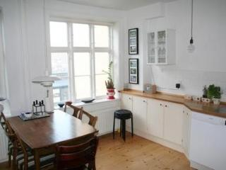 Cosy and Stylish Apartment in Charming Vesterbro - 3260 - Copenhagen vacation rentals