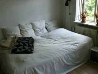 Nice bright one room Copenhagen apartment - Copenhagen vacation rentals