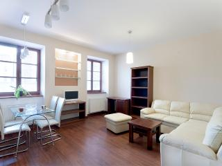 Affordable Air-con. Charming luxury Andel Ap. - Prague vacation rentals