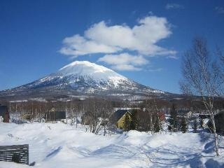 Rates Negotiable 4BR Townhouse w/ Large Hot Tub, Free Parking, WiFi (sleeps 10) - Niseko-cho vacation rentals