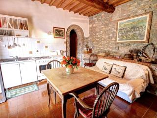 Apartment Joshua - Farmhouse Molinuzzo - Florence - Barberino Val d'Elsa vacation rentals
