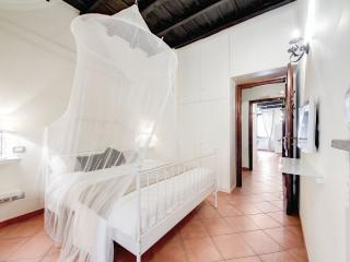 Enchanting apartment with terrace near the Roman Forum - Rome vacation rentals