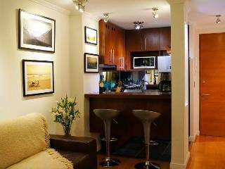 Beautiful 2 BR / 2 BATH apartment in Providencia / Parking / WIFI / AC - Santiago vacation rentals