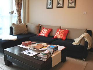 5BD 2BTH (5Beds) Fully Serviced Apartment-Central Business District #8 - Beijing vacation rentals