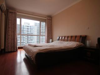 2BD 1BTH (2Beds) Fully Serviced Apartment-Central Business District #3 - Beijing vacation rentals