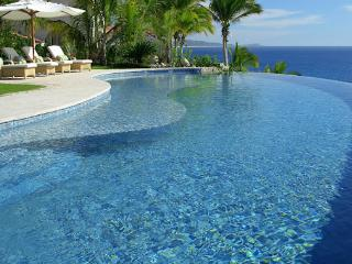 Beautiful 5 bedroom Cabo San Lucas Villa with Internet Access - Cabo San Lucas vacation rentals