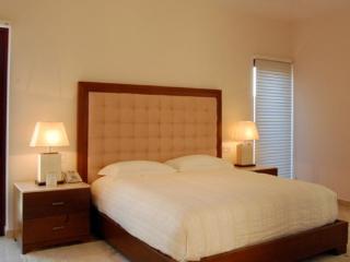 5 bedroom Villa with Internet Access in San Jose Del Cabo - San Jose Del Cabo vacation rentals