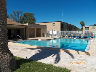 LARGO/SEMINOLE, FLORIDA 55 plus one bedroom condo - Seminole vacation rentals