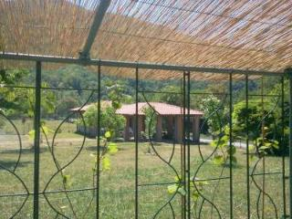 La Linea del Drago 1 - Casola in Lunigiana vacation rentals