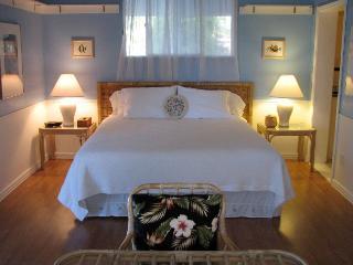 Caryl's Ohana $88 Special April-May in Kona - Kailua-Kona vacation rentals