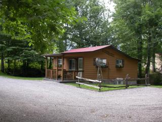 Alpine Cabin, MOTORCYCLE YES, Hot Tub, Wifi, 755WK - Maggie Valley vacation rentals