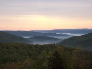 West Virginia Mountaintop Chalet w/ Endless Views - Mathias vacation rentals