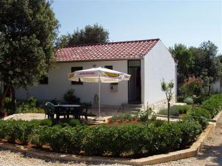 Nice 2 bedroom House in Petrcane - Petrcane vacation rentals