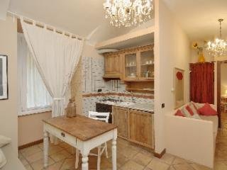 Lovely apartment near the Colosseum - Rome vacation rentals