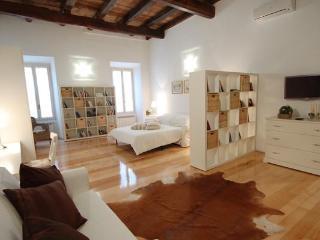 110 m2 - NAVONA - CAMPO DE' FIORI - JEWISH AREA - Rome vacation rentals