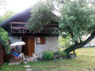 Nice House with Internet Access and Garden - Bosiljevo vacation rentals