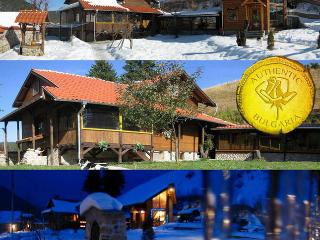 ski chalet near Borovets ski resort Bulgaria sleeps 15 sauna jacuzzi gym tavern A1 views - Samokov vacation rentals