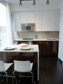 Fully equipped kitchen - Soho Parkway Ottawa  - 1 bedroom, walk everywhere! - Ottawa - rentals