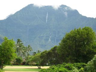Awesome Waterfall View, Walk To Beach! - Princeville vacation rentals