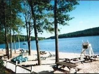491 Laurelwoods~ FUN FOR EVERYONE~Sleeps 10-12 - Image 1 - Lake Harmony - rentals