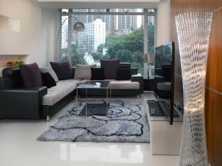 CENTRAL*MTR*OPEN VIEW*3bed2bath*Big*Discount* - Hong Kong vacation rentals
