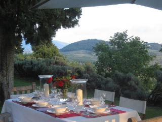 5 bedroom Villa with Microwave in Florence - Florence vacation rentals