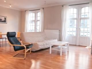 ID 2426 - Huge 1 Bdr Apt - steps from Av. Louise - Bierbeek vacation rentals