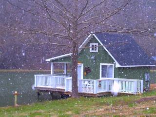 Perfect Cottage with Deck and Microwave - Sevierville vacation rentals