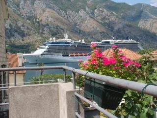 Martiva Apartment - Kotor vacation rentals