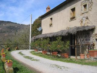 Fattoria Tecognano - Quiet Farmhouse in Tecognano Below Cortona - Cortona - rentals