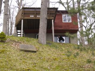 Cabin on all sports and excellent fishing Lake - Hastings vacation rentals