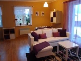 Nice Villa with Garden and Fireplace - Marianske Lazne vacation rentals