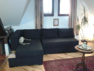 3 bedroom Apartment with Internet Access in Belgrade - Belgrade vacation rentals
