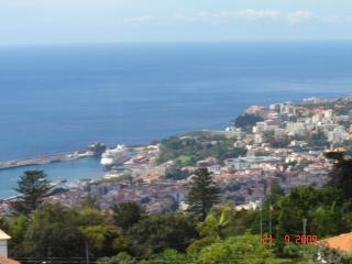 Spectacular View of City, Harbour and Gardens - Funchal vacation rentals