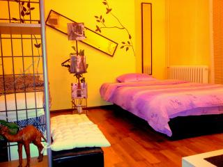 Sunny apartment in the center of Belgrade - Belgrade vacation rentals