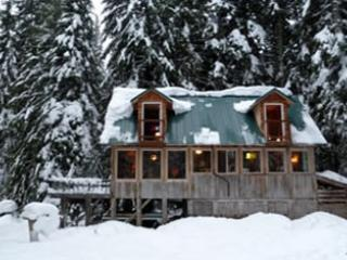 Windows facing Mt Hood in winter - Trillium Lake and Government Camp Secluded Cabin - Government Camp - rentals