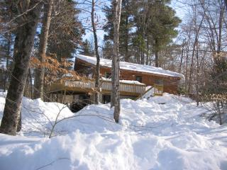 6 BR Ski House near Okemo, Killington - Ludlow vacation rentals