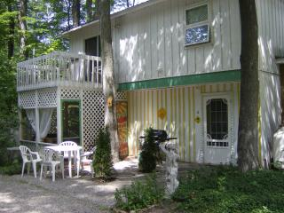 Fido's Retreat, a weekly rental for families of up to 4 - and their pup! (Arf!!) - Traverse City vacation rentals