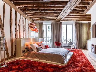 Contemporary French Loft in Saint Germain - Paris vacation rentals