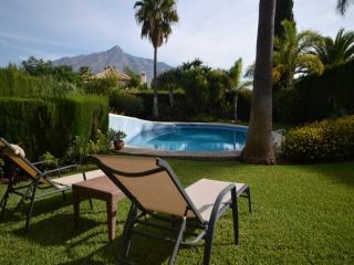 Villa Harry - Marbella vacation rentals