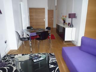 Luxury city centre apartment Edinburgh - Edinburgh vacation rentals