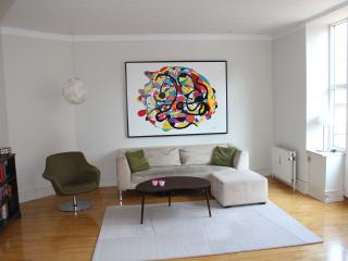Spacious flat in trendy Vesterbro - Denmark vacation rentals