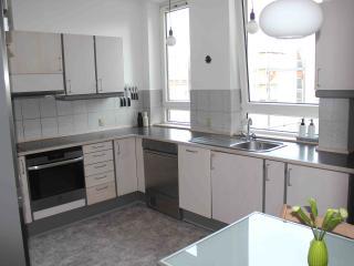 Spacious flat in trendy Vesterbro - Copenhagen vacation rentals
