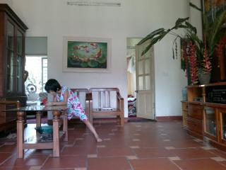 house in a very nice villige - Hanoi vacation rentals