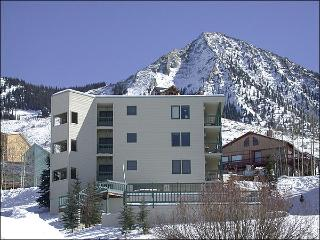 Wonderful Family Accommodations - Quiet Cul-de-Sac Location (1326) - Crested Butte vacation rentals