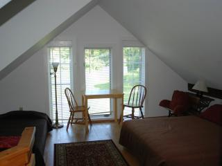 Saxtons River Studio Apartment - Proctorsville vacation rentals